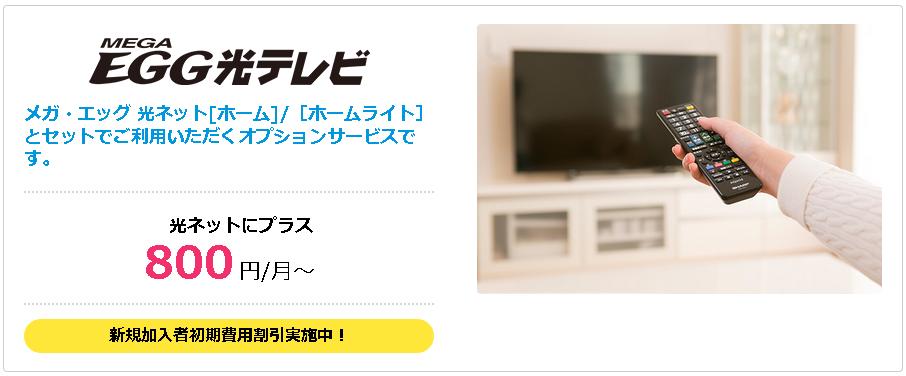 メガエッグ光テレビはネットに+800円~で地デジBSCSが視聴可能