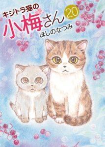 キジトラ猫の小梅さん レンタ